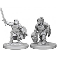 D&D: Dwarf Female Paladin
