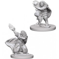D&D: Dwarf Female Wizard