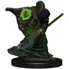 D&D Icons of the Realms Premium Figures: Elf Druid Male