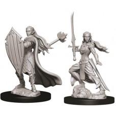 D&D: Female Elf Paladin