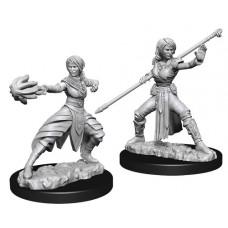 D&D: Female Half-Elf Monk
