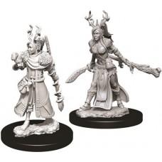 D&D: Female Human Druid