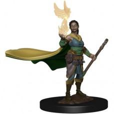 D&D Icons: Elf Druid Female Premium Figure