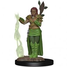 D&D Icons: Human Druid Female Premium Figure
