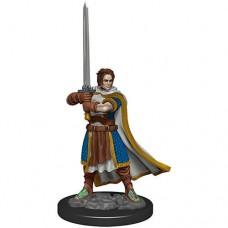 D&D Icons: Human Cleric Male Premium Figure