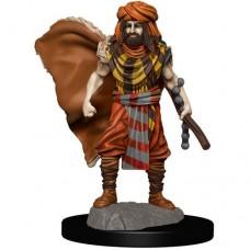 D&D Icons: Human Druid Male Premium Figure