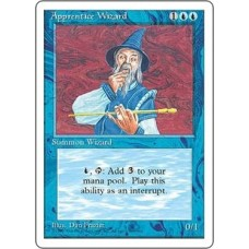 Apprentice Wizard (4th Edition)