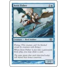 Aven Fisher (8th Edition)