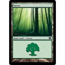 Forest v.1 (9th Edition)