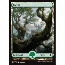 Forest - Full Art v. 1 (Battle for Zendikar)