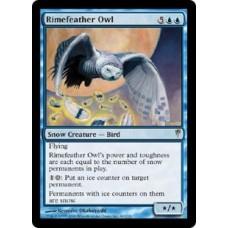 Rimefeather Owl (Coldsnap)
