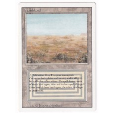 Scrubland #3 NM Revised