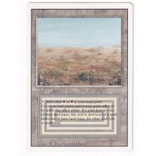 Scrubland #4 NM Revised