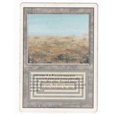 Scrubland #6 EX Revised