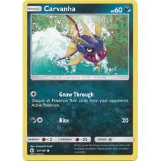 Carvanha - 81/149 (Sun & Moon Base Set)