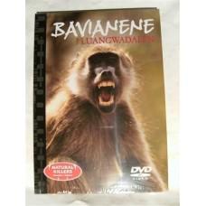 Bavianene i Luamhwadalen (DVD)