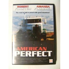 American Perfect (DVD)